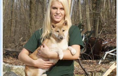 Rescue Shiba Puppy – Harry