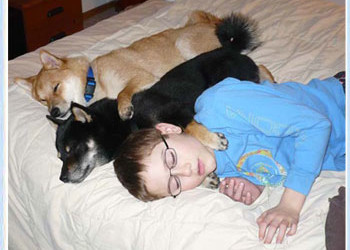 My three sons, Ryan, Rychu and Dakota sneaking a Sunday morning nap